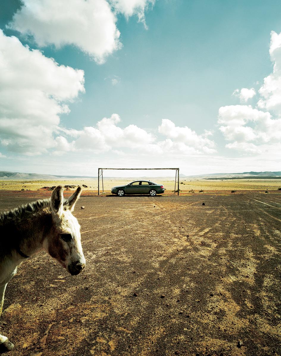 GQ_Donkey